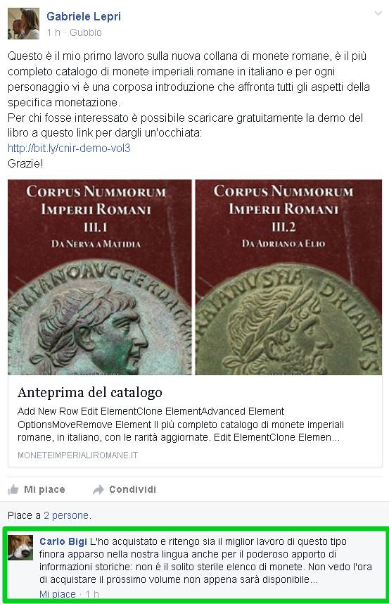 testimonianza-facebook-delinea