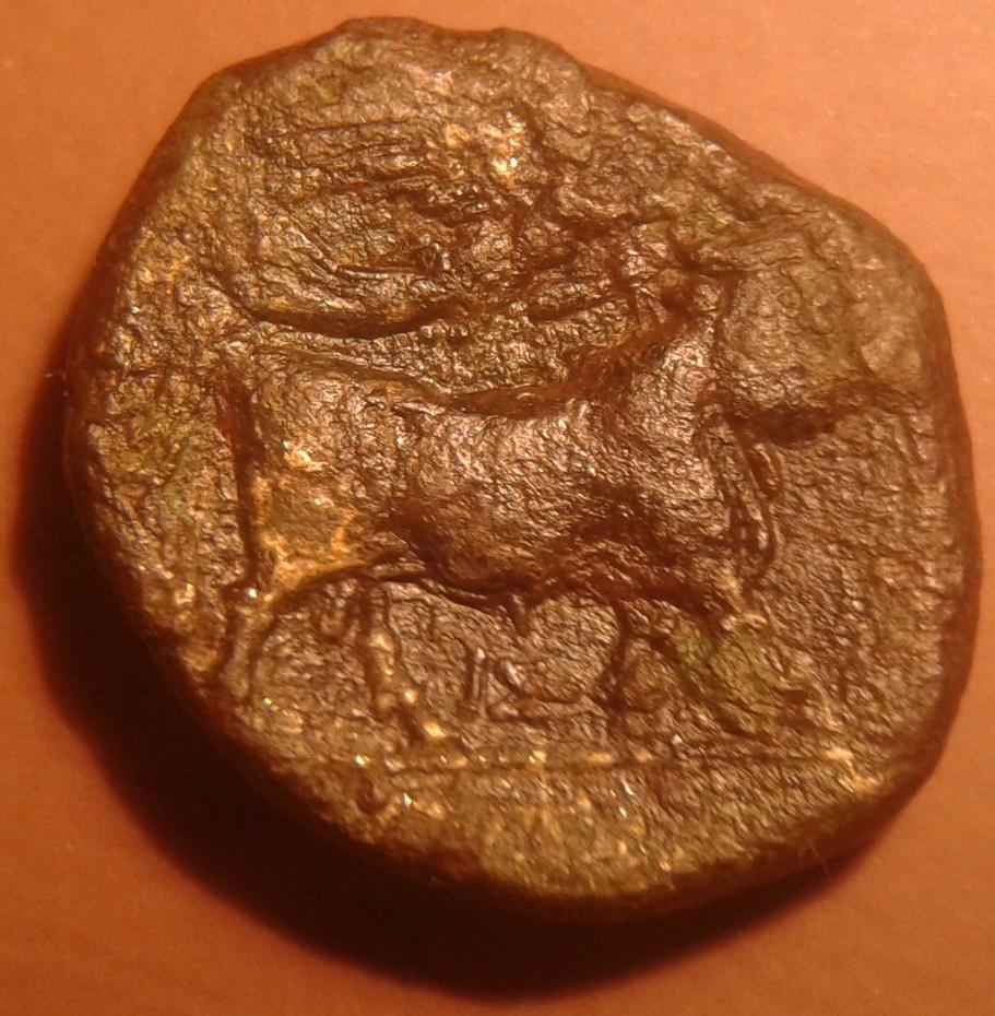 Moneta romana IV III sec. a.C. con Apollo e toro androprosopo, rovescio